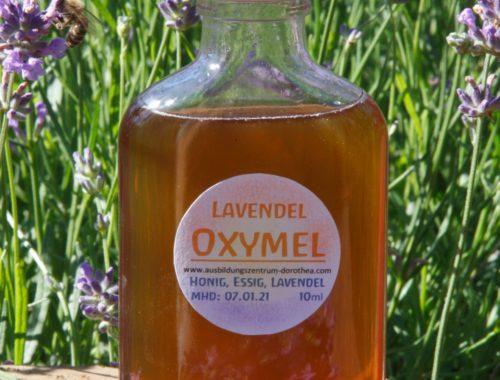 Flasche Lavendeloxymel